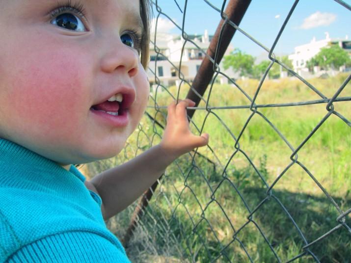 Men efter en kort stund stod hon vid staketet och vinkade!